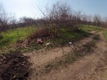 Фотофiксацiя вiд 29.03.2017 року територiї рекреаційної зони парку на Меморіалі 411-ї батареї_6.