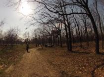 Фотофiксацiя вiд 29.03.2017 року територiї рекреаційної зони парку на Меморіалі 411-ї батареї_21.